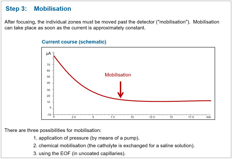 The mobilisation